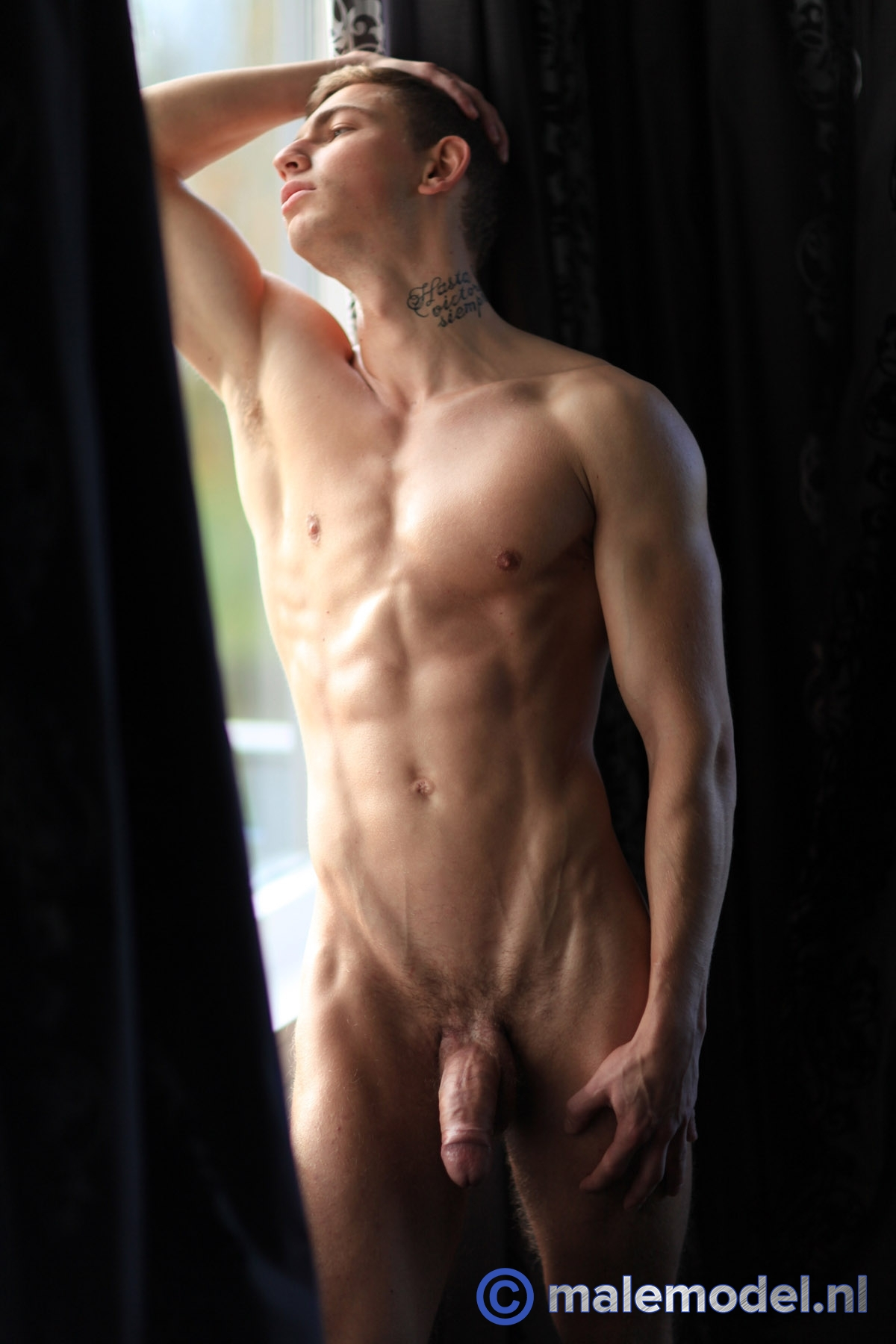 nude male model gallery